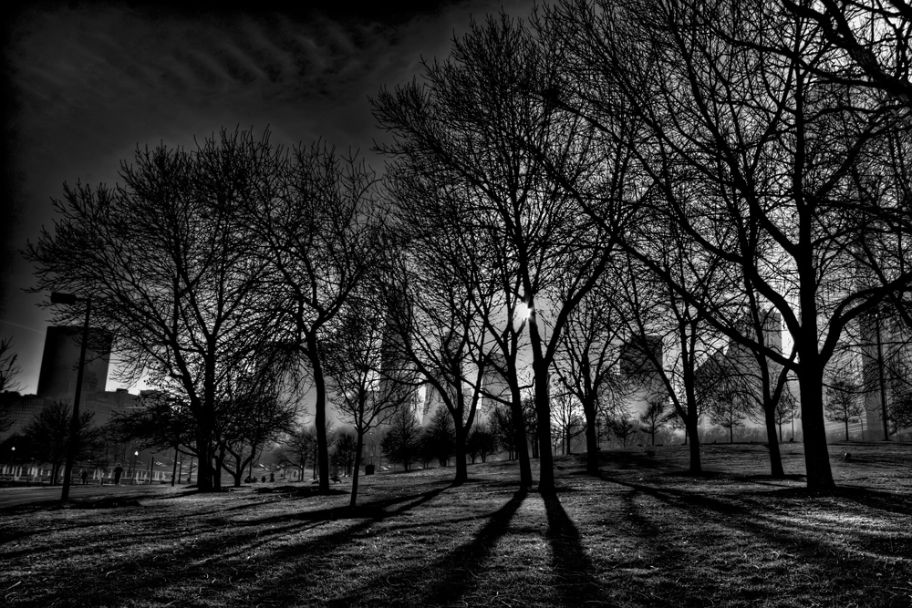 Shadows and Fog in Grant Park, Chicago